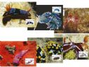 Australia Maximum Cards: APMX 423 Underwater World set of 6